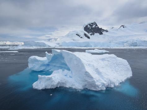 antarctic365