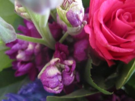 Flowers035