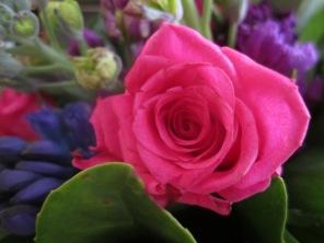 Flowers037